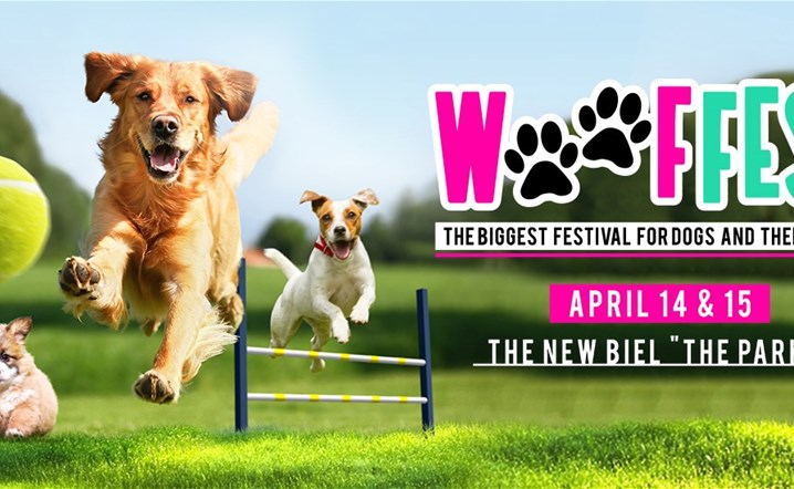 WoofFest - Beirut - The Biggest Festival for dogs and their people... Join us!