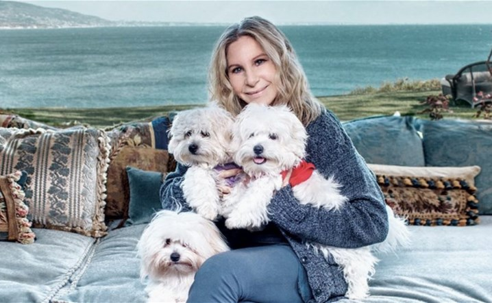Barbra Streisand reveals she cloned her dead dog, twice
