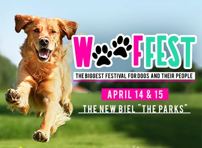 Wooffest-the largest festival for dogs in Beirut